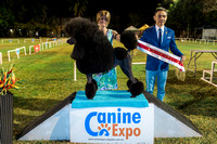 Canine Expo-DABKC shows July 2016