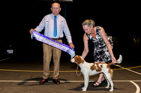 2016 November 26 Darwin Ladies Kennel Club